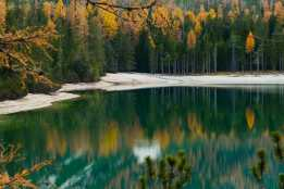 Wald_1-min