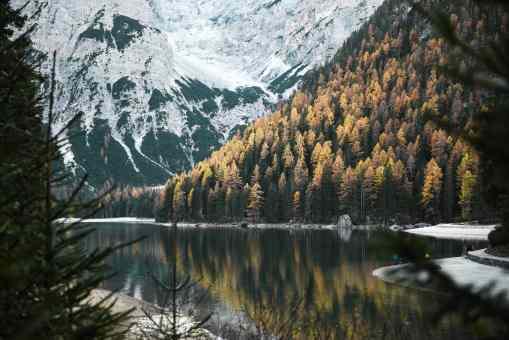Wald_2-min